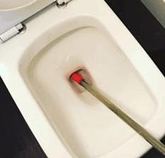 toilet unclogging cost