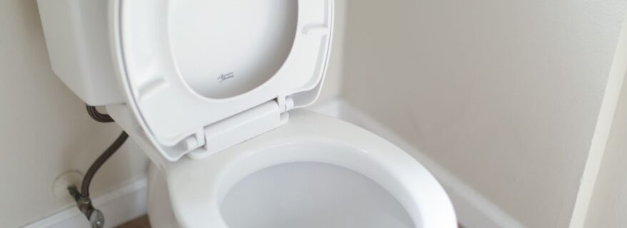 Cleaning a toilet - Unclog It Vancouver plumbers